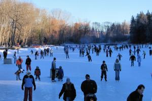 Bowness Park Skating