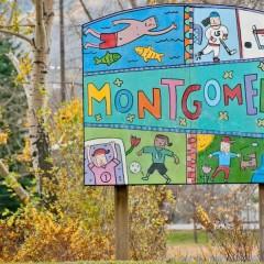Montgomery Infills